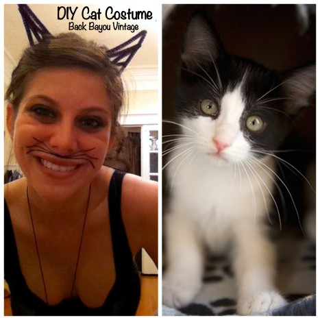DIY Cat Costume